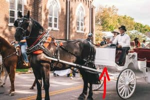 why is it called a dashboard horse carriage